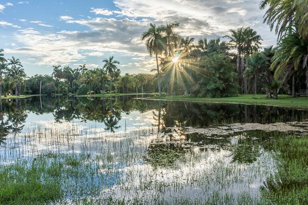 Coral Gables Fairchild Gardens 2015-09-2500087--HDR